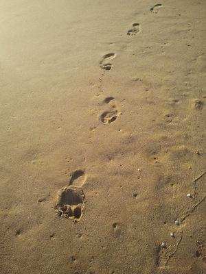 7 Schritte zur Vergebung